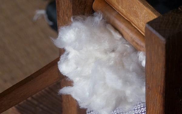 『綿の意思』